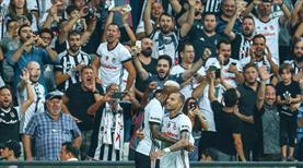 Beşiktaş taraftarının dikkatine!