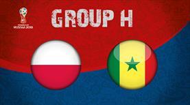 Polonya - Senegal